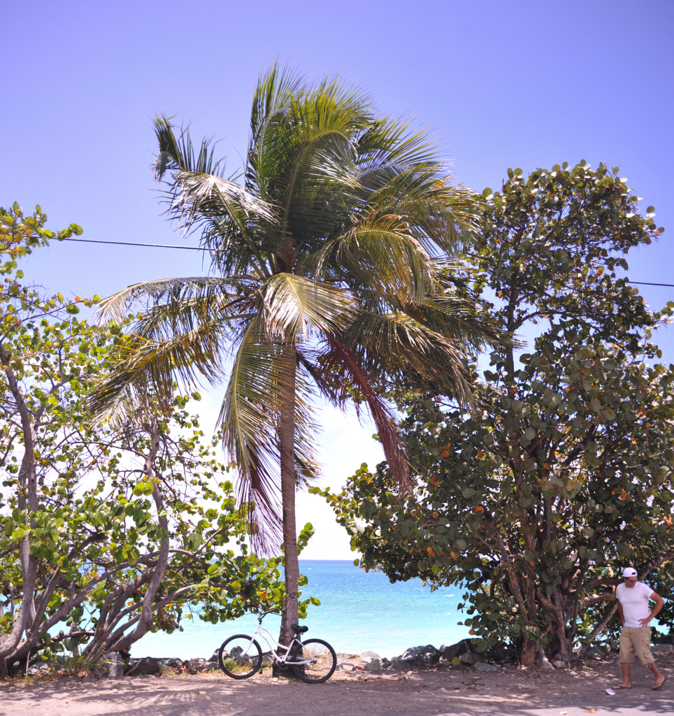 bike rental tour includes a bike to the beach
